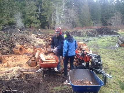 Splitting wood with visit family.