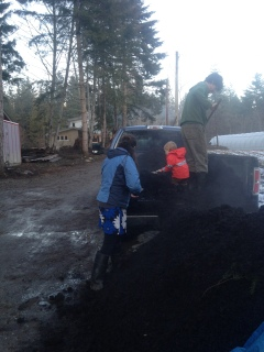 Stock-piling compost.
